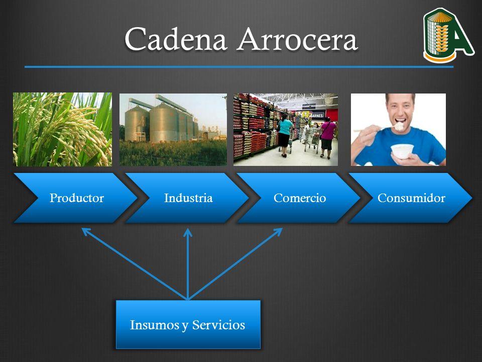 Proyecto: Capacitación en Gestión de Negocios (Instituto Nacional de Aprendizaje -INA-) 1.Área Administrativa en relación con Organización Empresarial: 11 Cursos 2.Área de Programas y Módulos Certificables en Agricultura: 5 Cursos 3.Área de Gestión Empresas Agropecuarias: Programas y Módulos Certificables: 29 Cursos 4.Área de Plataforma Virtual de apoyo a PYMES