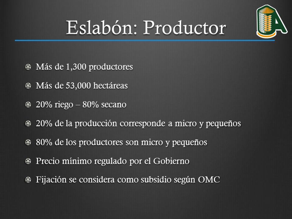 Eslabón: Productor Más de 1,300 productores Más de 53,000 hectáreas 20% riego – 80% secano 20% de la producción corresponde a micro y pequeños 80% de