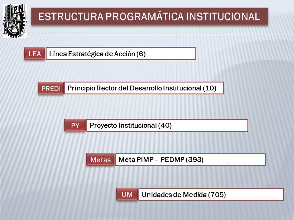 Línea Estratégica de Acción (6) Principio Rector del Desarrollo Institucional (10) Proyecto Institucional (40) Unidades de Medida (705) Meta PIMP – PEDMP (393) ESTRUCTURA PROGRAMÁTICA INSTITUCIONAL