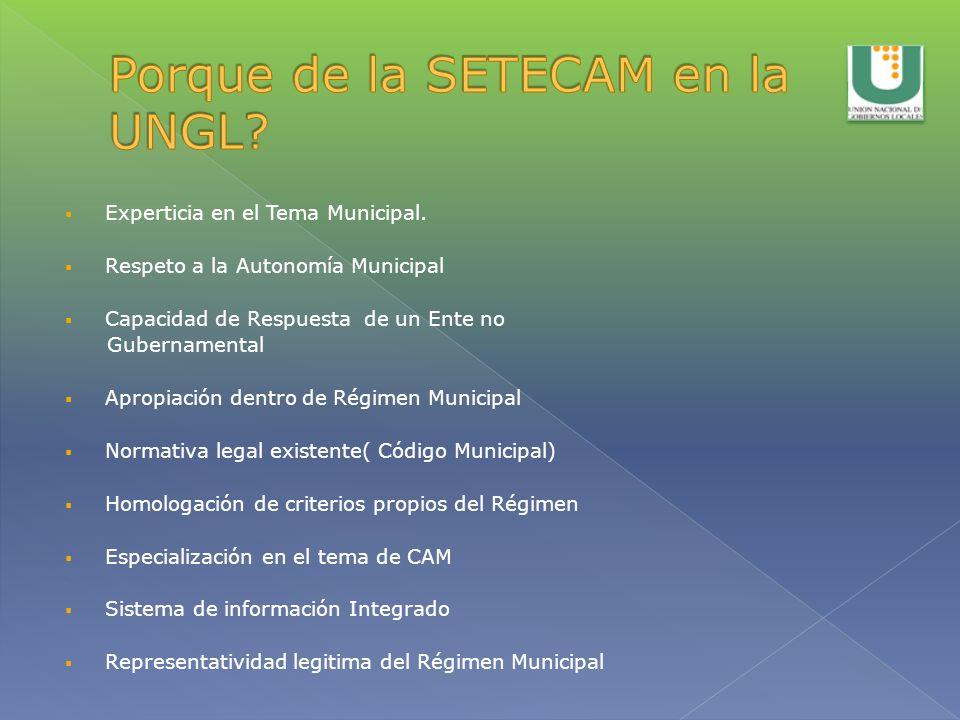 Experticia en el Tema Municipal. Respeto a la Autonomía Municipal Capacidad de Respuesta de un Ente no Gubernamental Apropiación dentro de Régimen Mun