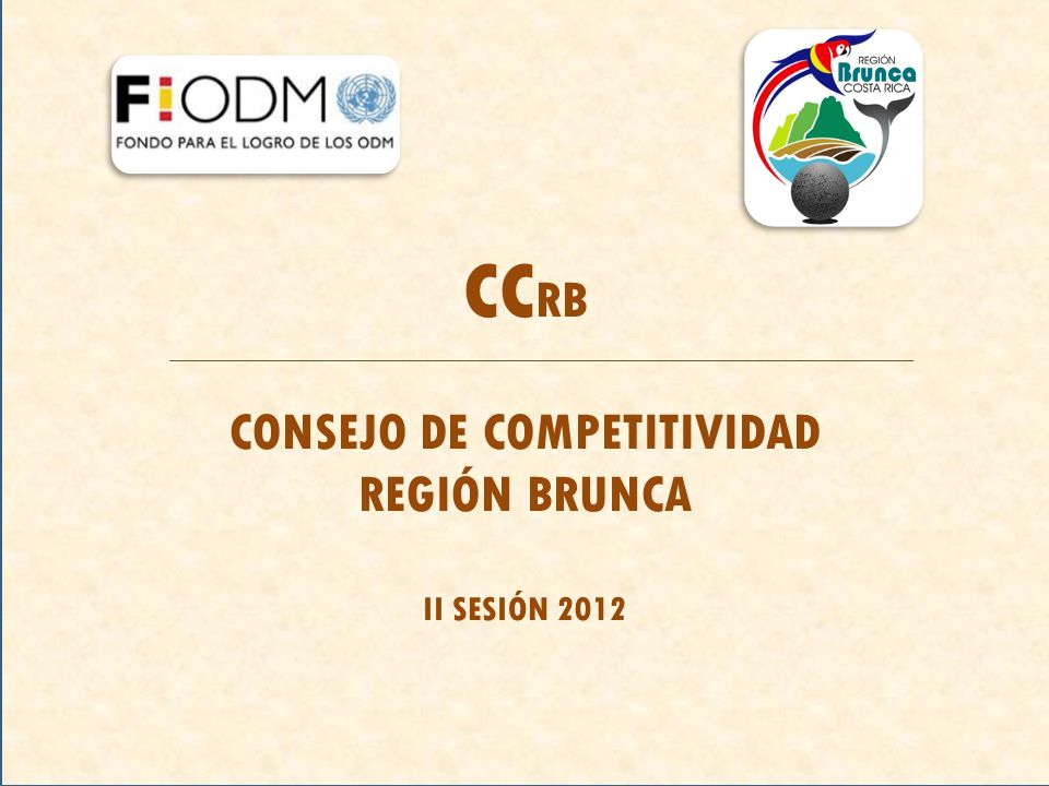 CC RB CONSEJO DE COMPETITIVIDAD REGIÓN BRUNCA II SESIÓN 2012
