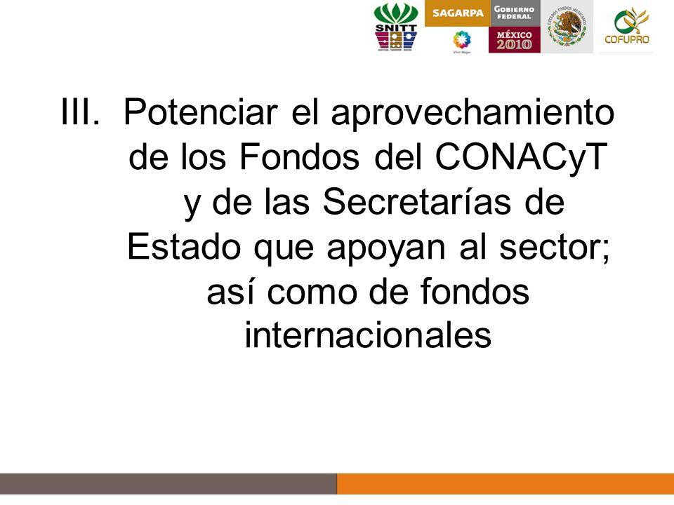 III.Potenciar el aprovechamiento de los Fondos del CONACyT y de las Secretarías de Estado que apoyan al sector; así como de fondos internacionales 11