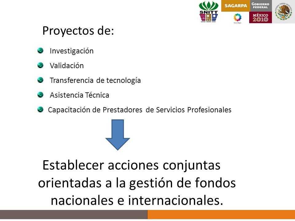 Proyectos de: Investigación Validación Transferencia de tecnología Asistencia Técnica Capacitación de Prestadores de Servicios Profesionales Establecer acciones conjuntas orientadas a la gestión de fondos nacionales e internacionales.