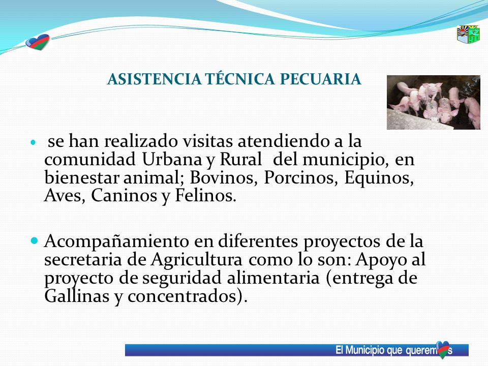 ASISTENCIA TÉCNICA PECUARIA se han realizado visitas atendiendo a la comunidad Urbana y Rural del municipio, en bienestar animal; Bovinos, Porcinos, E