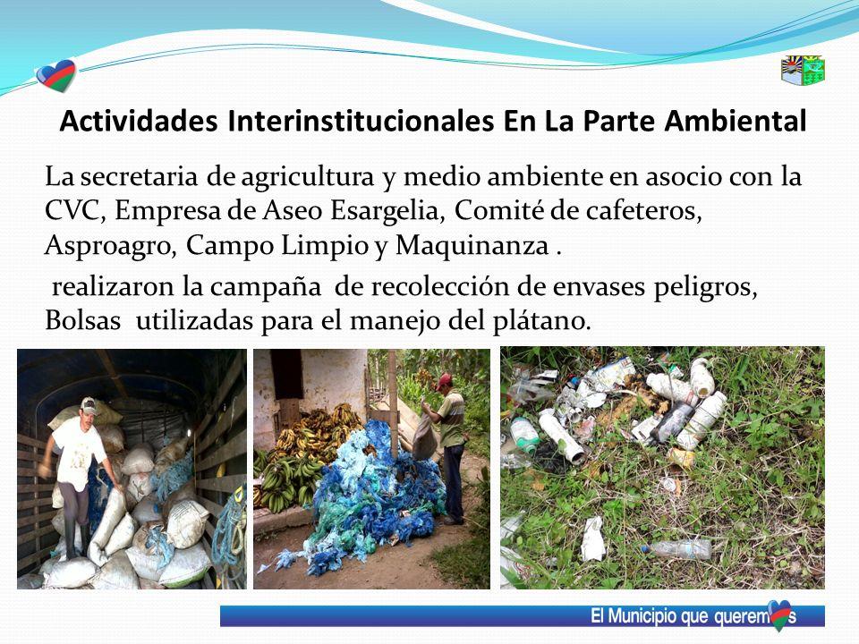 La secretaria de agricultura y medio ambiente en asocio con la CVC, Empresa de Aseo Esargelia, Comité de cafeteros, Asproagro, Campo Limpio y Maquinan