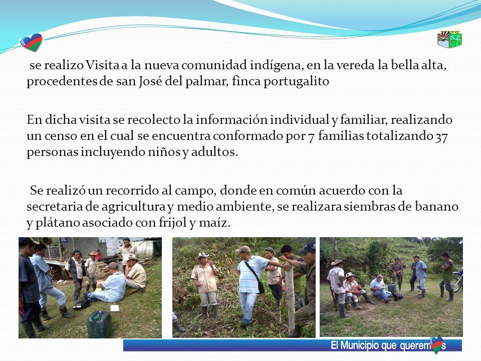se realizo Visita a la nueva comunidad indígena, en la vereda la bella alta, procedentes de san José del palmar, finca portugalito En dicha visita se