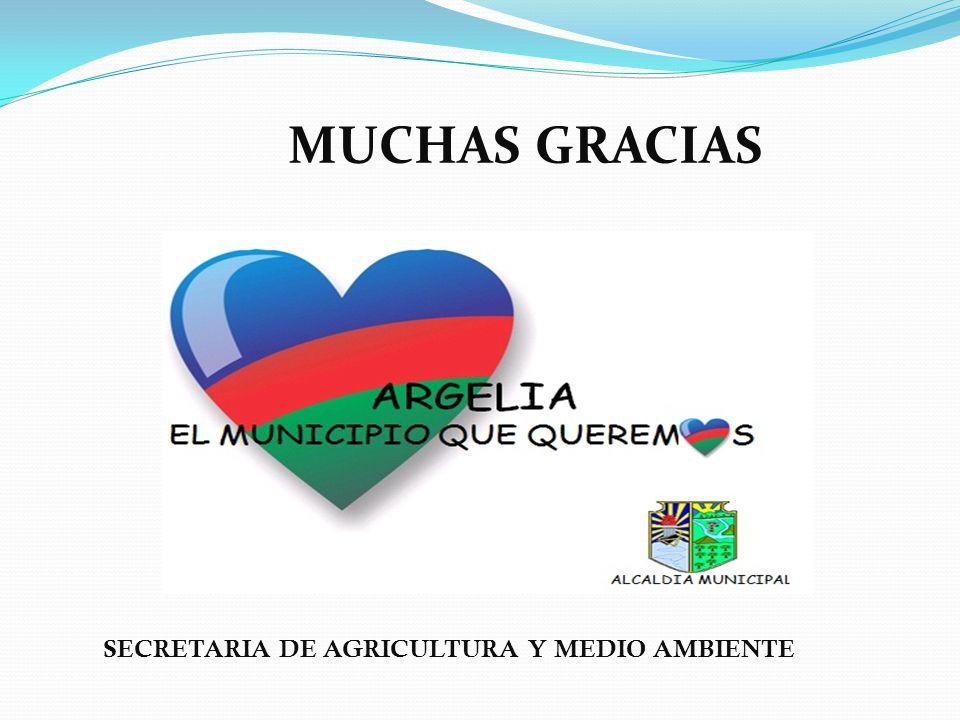 MUCHAS GRACIAS SECRETARIA DE AGRICULTURA Y MEDIO AMBIENTE