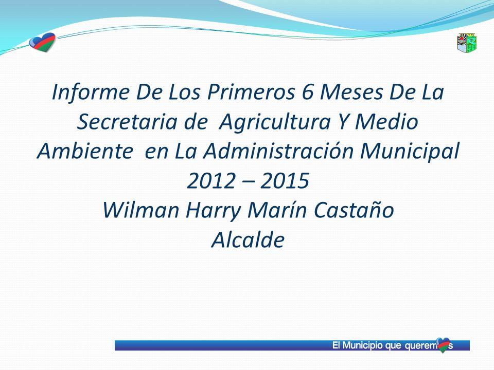Informe De Los Primeros 6 Meses De La Secretaria de Agricultura Y Medio Ambiente en La Administración Municipal 2012 – 2015 Wilman Harry Marín Castaño