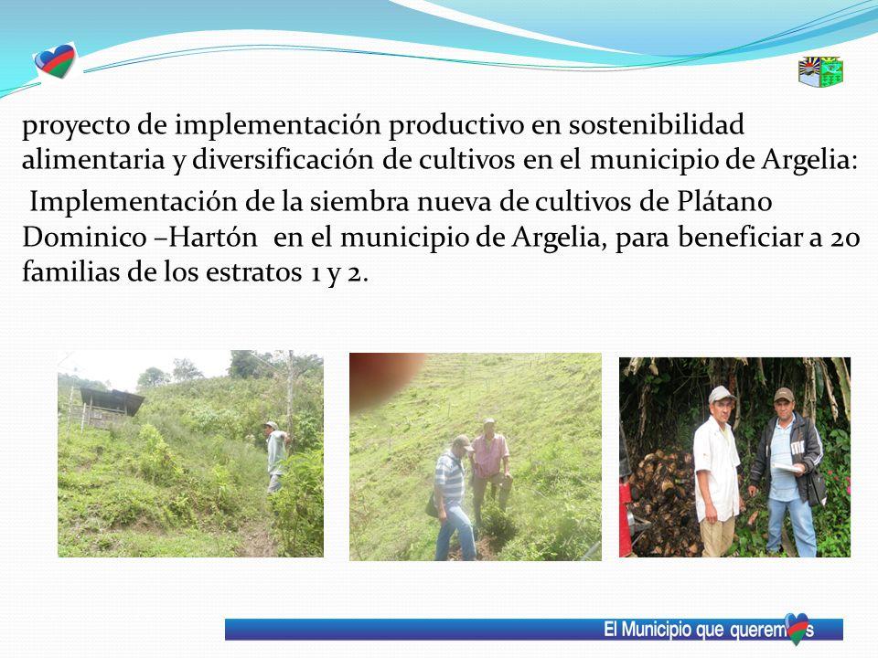 proyecto de implementación productivo en sostenibilidad alimentaria y diversificación de cultivos en el municipio de Argelia: Implementación de la sie