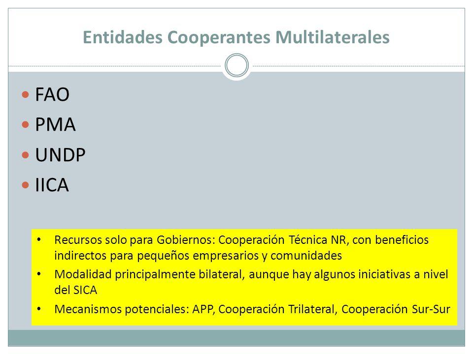 Entidades Cooperantes Multilaterales FAO PMA UNDP IICA Recursos solo para Gobiernos: Cooperación Técnica NR, con beneficios indirectos para pequeños e
