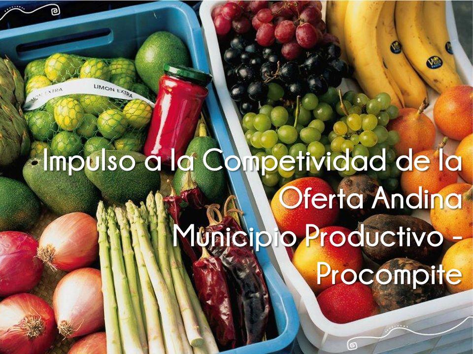Impulso a la Competividad de la Oferta Andina Municipio Productivo - Procompite