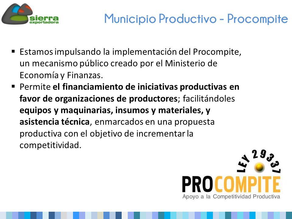 Estamos impulsando la implementación del Procompite, un mecanismo público creado por el Ministerio de Economía y Finanzas.