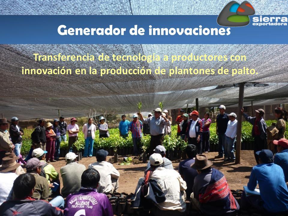 Generador de innovaciones Transferencia de tecnología a productores con innovación en la producción de plantones de palto.