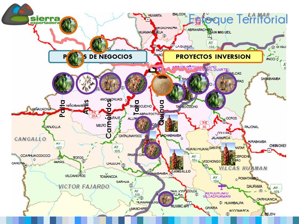Enfoque Territorial PROYECTOS INVERSIONPLANES DE NEGOCIOS Palta Anis Camélidos Tara Quinua