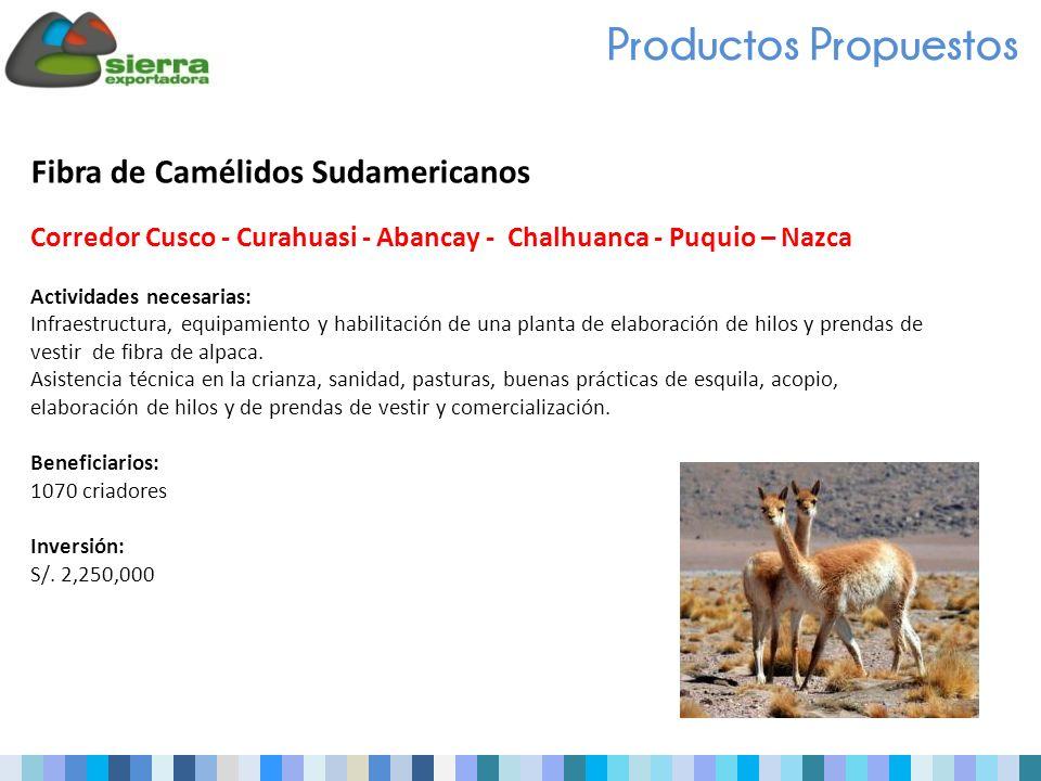 Fibra de Camélidos Sudamericanos Corredor Cusco - Curahuasi - Abancay - Chalhuanca - Puquio – Nazca Actividades necesarias: Infraestructura, equipamiento y habilitación de una planta de elaboración de hilos y prendas de vestir de fibra de alpaca.