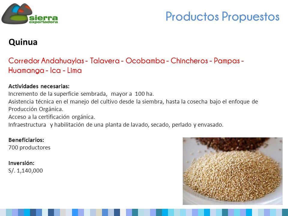 Quinua Corredor Andahuaylas - Talavera - Ocobamba - Chincheros - Pampas - Huamanga - Ica - Lima Actividades necesarias: Incremento de la superficie sembrada, mayor a 100 ha.