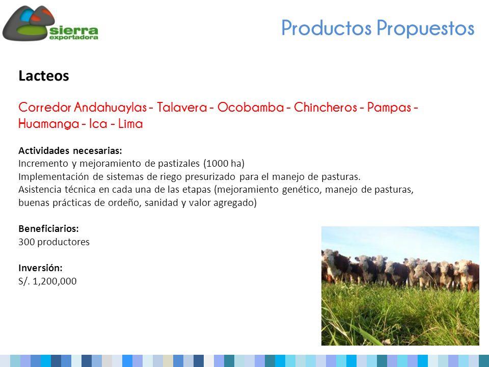 Productos Propuestos Lacteos Corredor Andahuaylas - Talavera - Ocobamba - Chincheros - Pampas - Huamanga - Ica - Lima Actividades necesarias: Incremento y mejoramiento de pastizales (1000 ha) Implementación de sistemas de riego presurizado para el manejo de pasturas.