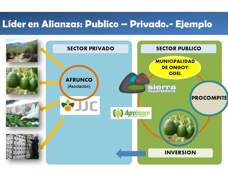 Líder en Alianzas: Publico – Privado.- Ejemplo INVERSION SECTOR PRIVADO AFRUNCO (Asociación) SECTOR PUBLICO MUNICIPALIDAD DE ONGOY: ODEL PROCOMPITE