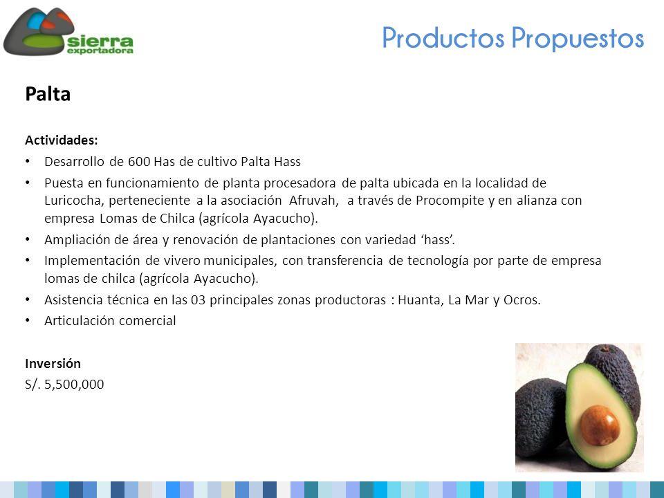 Palta Actividades: Desarrollo de 600 Has de cultivo Palta Hass Puesta en funcionamiento de planta procesadora de palta ubicada en la localidad de Luricocha, perteneciente a la asociación Afruvah, a través de Procompite y en alianza con empresa Lomas de Chilca (agrícola Ayacucho).