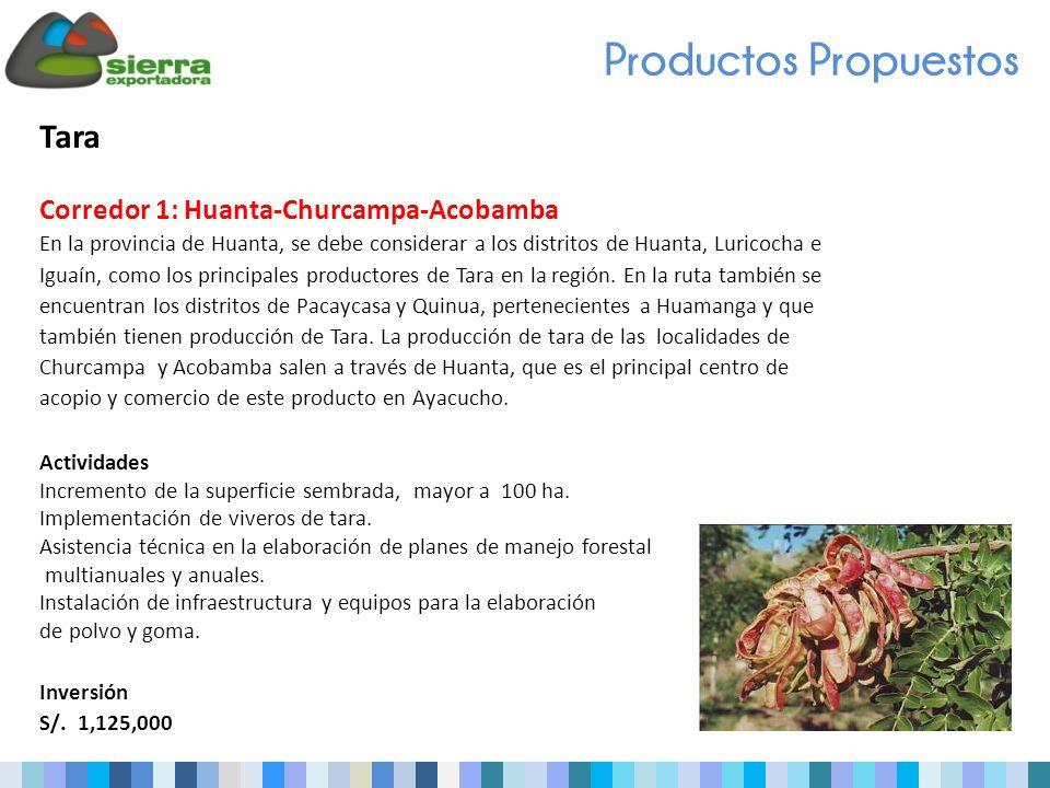 Tara Corredor 1: Huanta-Churcampa-Acobamba En la provincia de Huanta, se debe considerar a los distritos de Huanta, Luricocha e Iguaín, como los principales productores de Tara en la región.