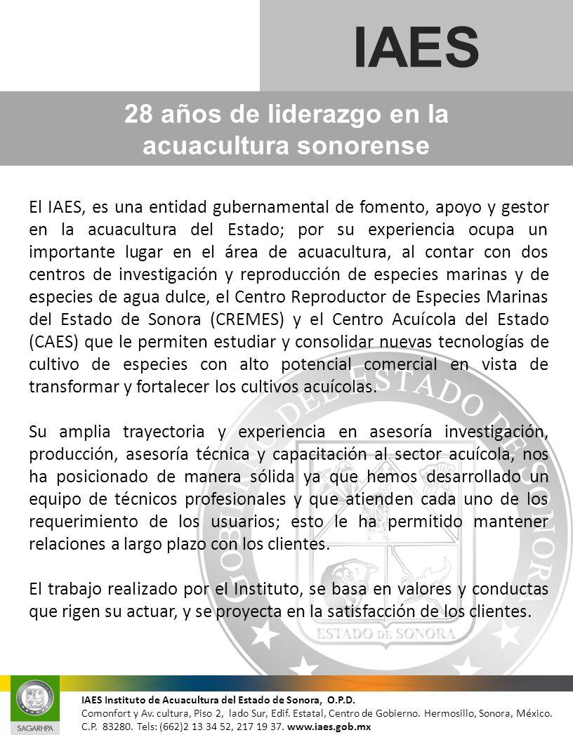28 años de liderazgo en la acuacultura sonorense IAES El IAES, es una entidad gubernamental de fomento, apoyo y gestor en la acuacultura del Estado; p