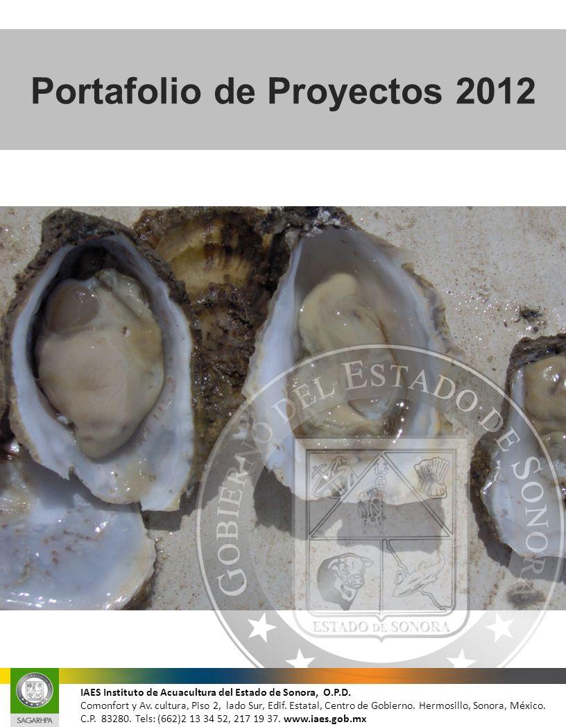 Portafolio de Proyectos 2012 IAES Instituto de Acuacultura del Estado de Sonora, O.P.D. Comonfort y Av. cultura, Piso 2, lado Sur, Edif. Estatal, Cent