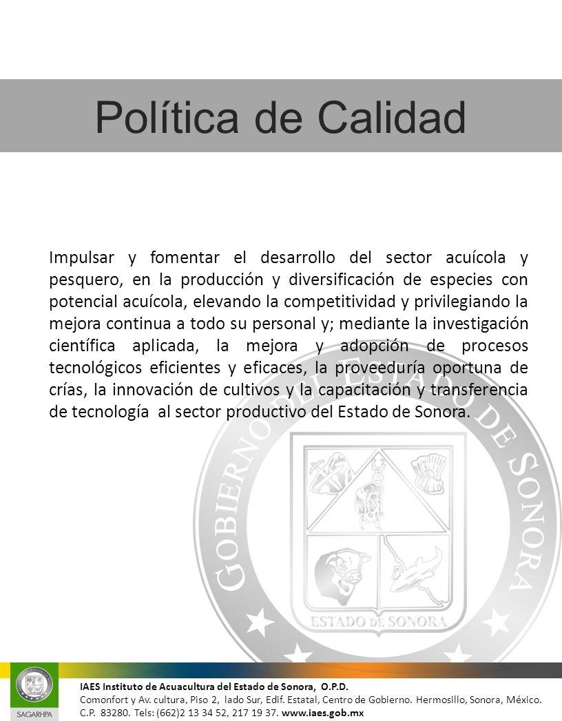 IAES Instituto de Acuacultura del Estado de Sonora, O.P.D. Comonfort y Av. cultura, Piso 2, lado Sur, Edif. Estatal, Centro de Gobierno. Hermosillo, S