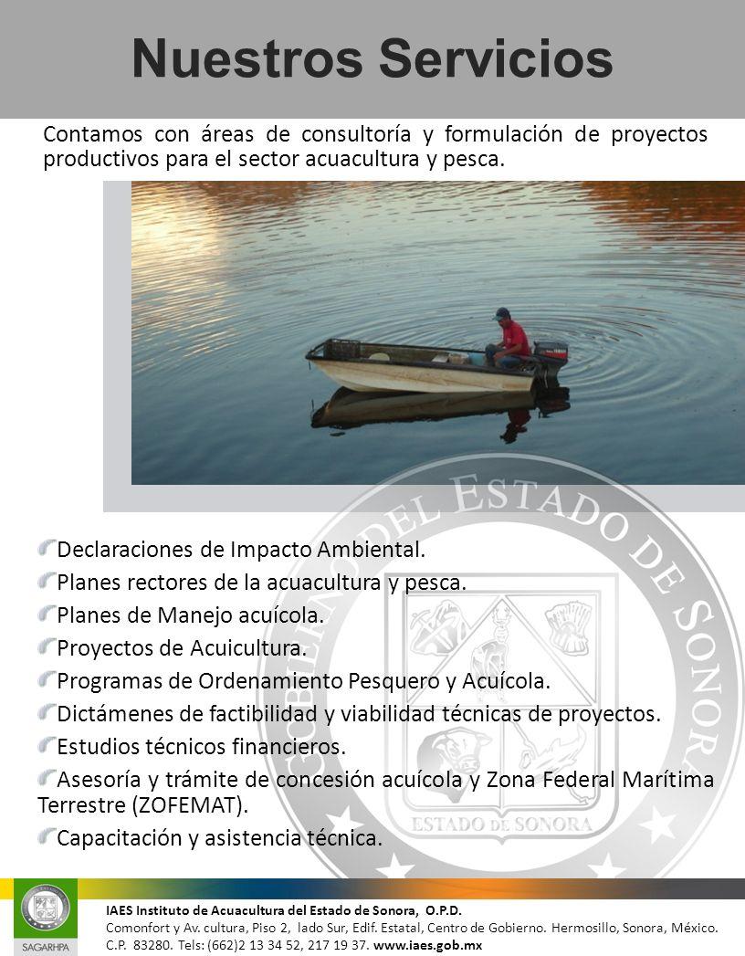 Nuestros Servicios Declaraciones de Impacto Ambiental. Planes rectores de la acuacultura y pesca. Planes de Manejo acuícola. Proyectos de Acuicultura.