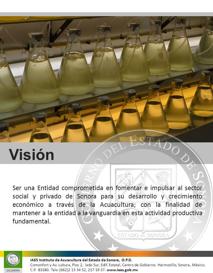Visión Ser una Entidad comprometida en fomentar e impulsar al sector social y privado de Sonora para su desarrollo y crecimiento económico a través de