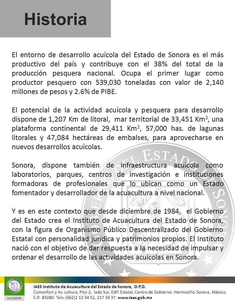 Historia El entorno de desarrollo acuícola del Estado de Sonora es el más productivo del país y contribuye con el 38% del total de la producción pesqu