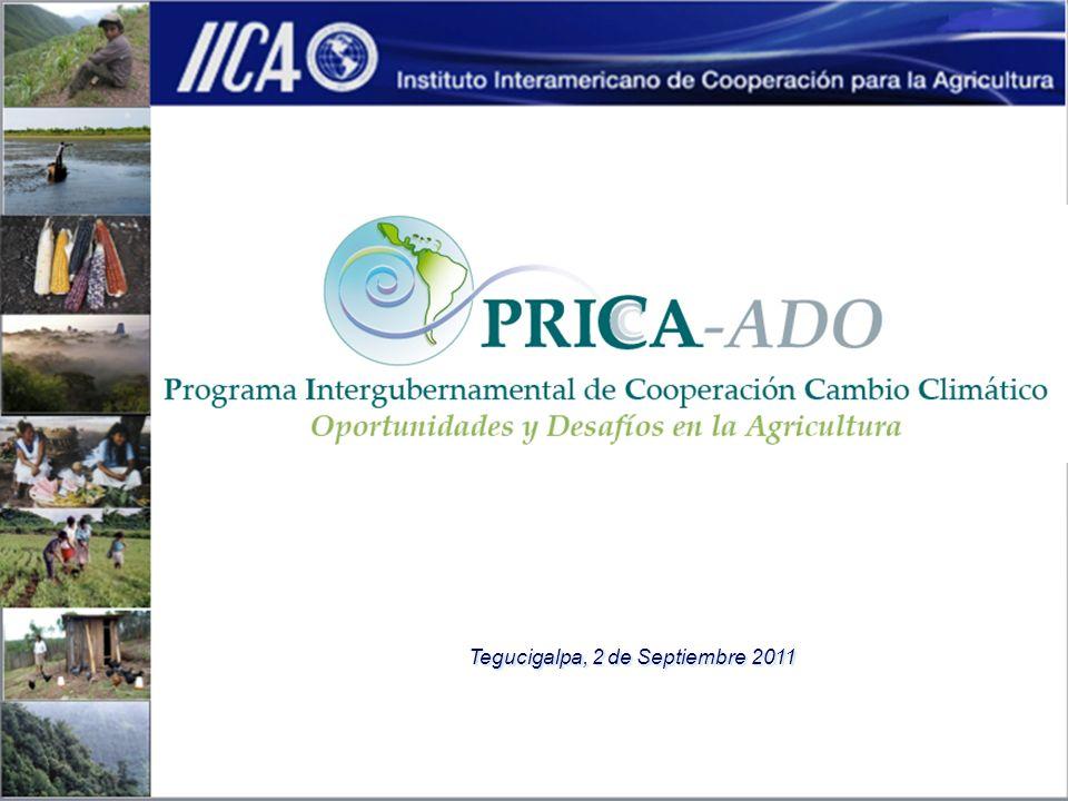 www.priccca.net