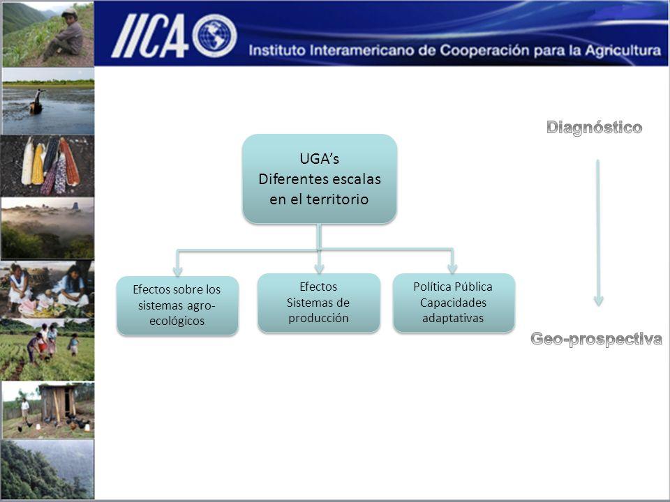Contar con una Red Internacional de investigación científica y técnica 1 Desarrollar un Sistema Interactivo de Información geoprospectiva 2 El diseño de los procedimientos de evaluación de tierras 3 Materiales, métodos y procedimientos para el desarrollo de capacidades adaptativas 4 Políticas, desarrollos institucionales, legislación y modelos de inversión pública 5