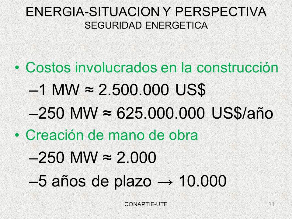 ENERGIA-SITUACION Y PERSPECTIVA SEGURIDAD ENERGETICA Costos involucrados en la construcción –1 MW 2.500.000 US$ –250 MW 625.000.000 US$/año Creación d