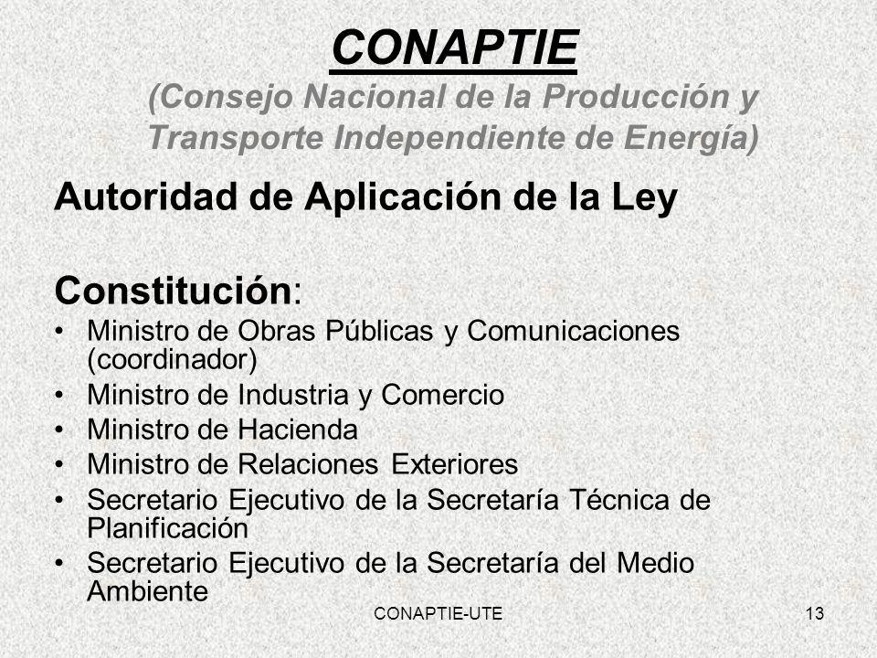 CONAPTIE (Consejo Nacional de la Producción y Transporte Independiente de Energía) Autoridad de Aplicación de la Ley Constitución: Ministro de Obras P