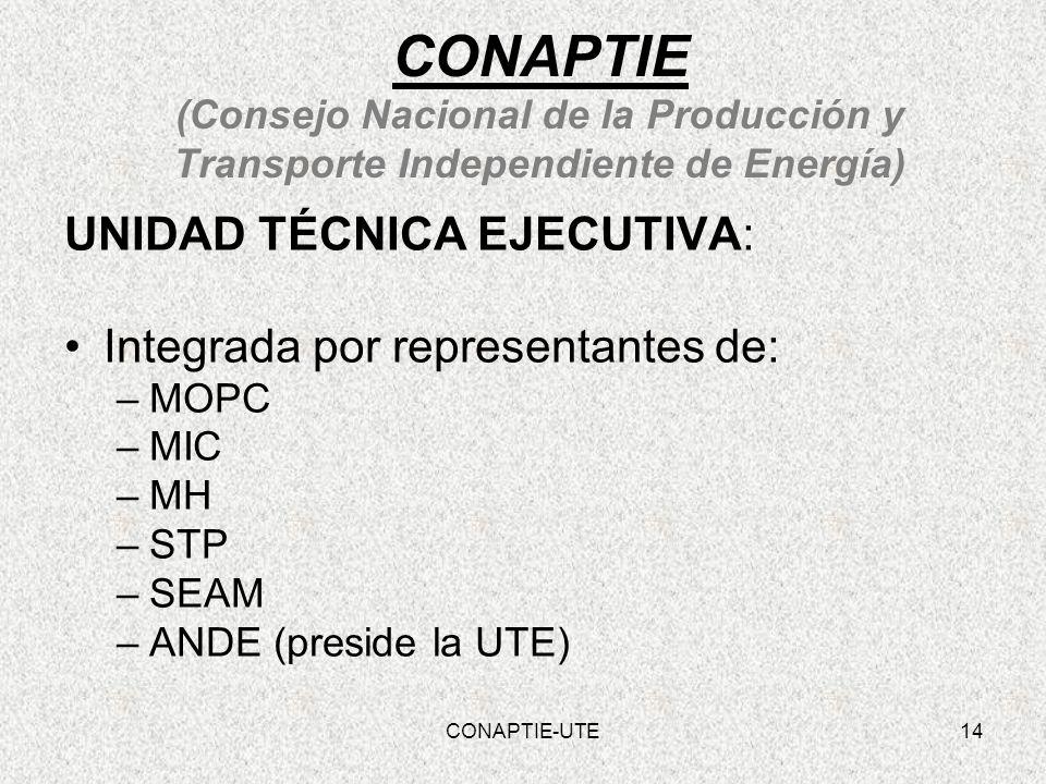 CONAPTIE (Consejo Nacional de la Producción y Transporte Independiente de Energía) UNIDAD TÉCNICA EJECUTIVA: Integrada por representantes de: –MOPC –M