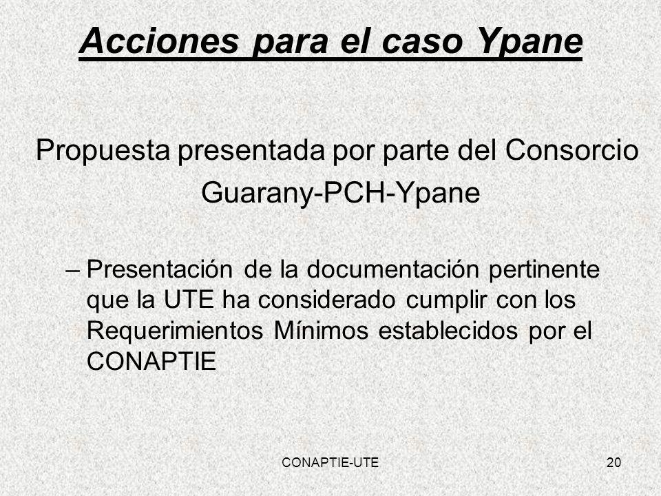 Acciones para el caso Ypane Propuesta presentada por parte del Consorcio Guarany-PCH-Ypane –Presentación de la documentación pertinente que la UTE ha