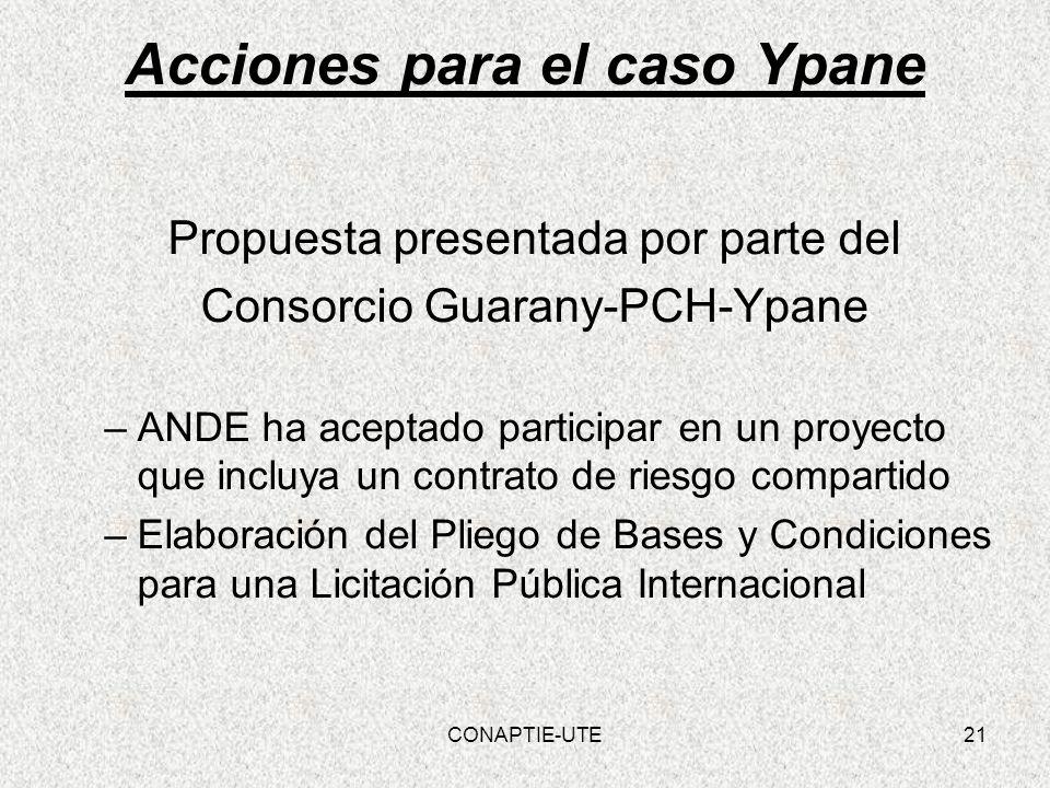 Acciones para el caso Ypane Propuesta presentada por parte del Consorcio Guarany-PCH-Ypane –ANDE ha aceptado participar en un proyecto que incluya un