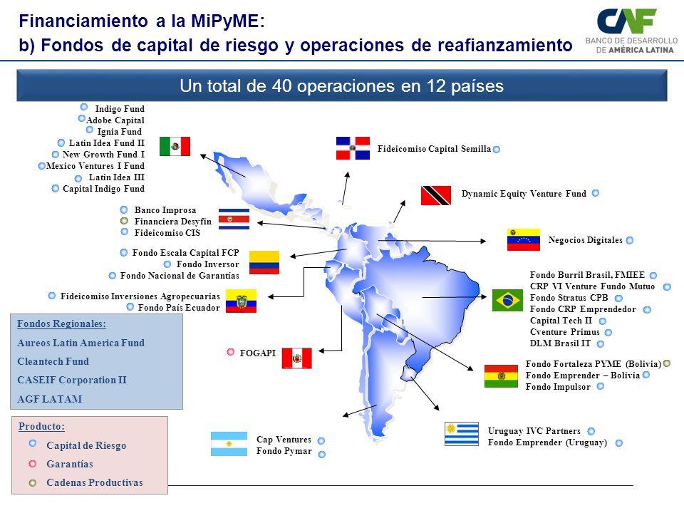 Financiamiento a la MiPyME: b) Fondos de capital de riesgo y operaciones de reafianzamiento Un total de 40 operaciones en 12 países Fondo Fortaleza PY