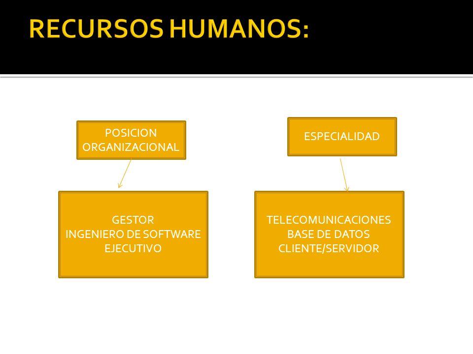 POSICION ORGANIZACIONAL GESTOR INGENIERO DE SOFTWARE EJECUTIVO ESPECIALIDAD TELECOMUNICACIONES BASE DE DATOS CLIENTE/SERVIDOR