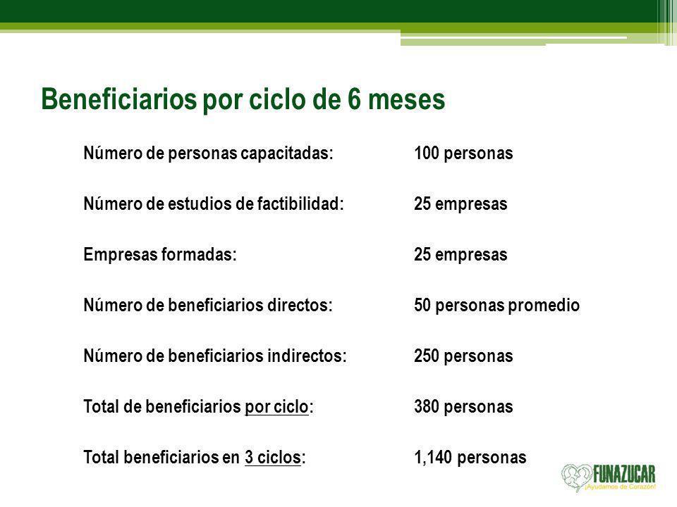 Beneficiarios por ciclo de 6 meses Número de personas capacitadas:100 personas Número de estudios de factibilidad: 25 empresas Empresas formadas:25 em