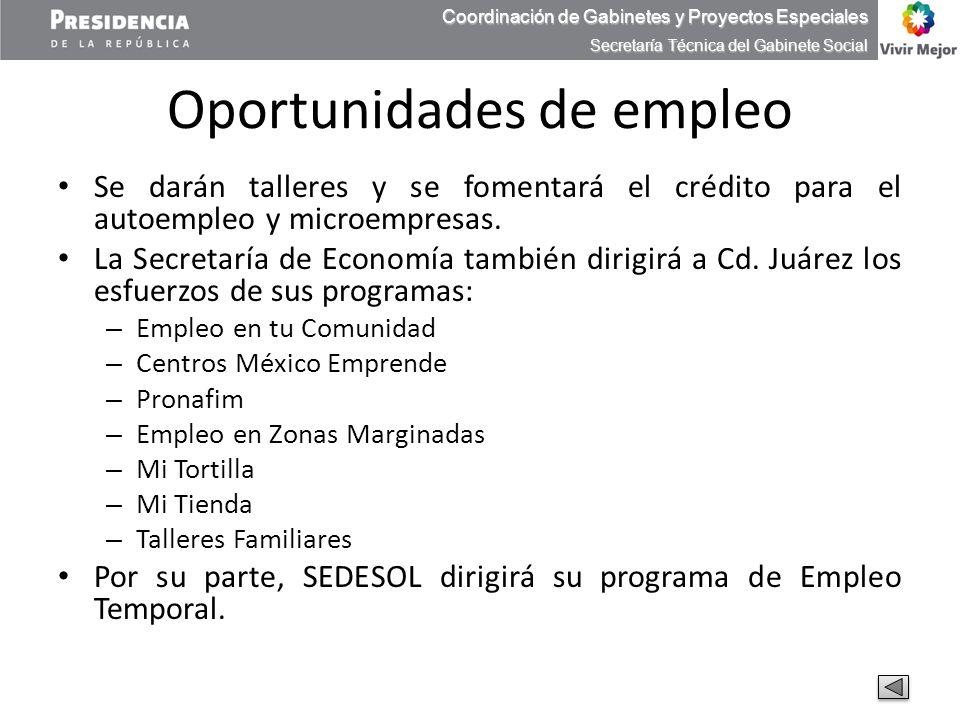 Oportunidades de empleo Se darán talleres y se fomentará el crédito para el autoempleo y microempresas. La Secretaría de Economía también dirigirá a C