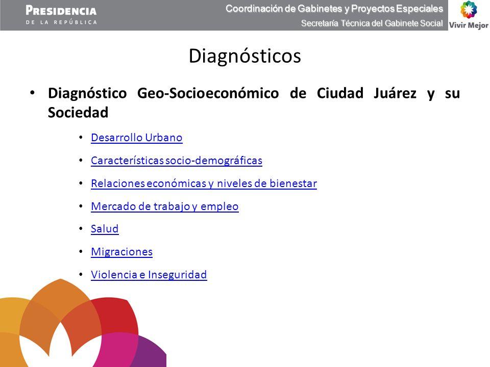 Diagnóstico Geo-Socioeconómico de Ciudad Juárez y su Sociedad Desarrollo Urbano Desarrollo Urbano Características socio-demográficas Características s