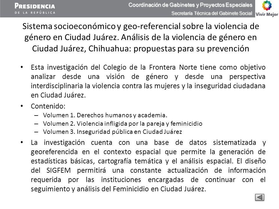 Sistema socioeconómico y geo-referencial sobre la violencia de género en Ciudad Juárez. Análisis de la violencia de género en Ciudad Juárez, Chihuahua