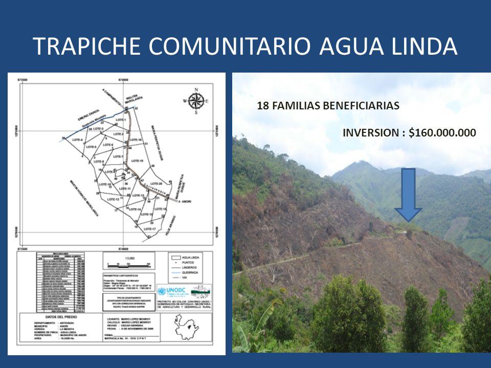 TRAPICHE COMUNITARIO AGUA LINDA 18 FAMILIAS BENEFICIARIAS INVERSION : $160.000.000