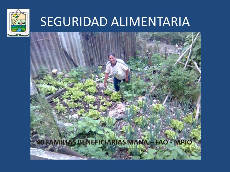 SEGURIDAD ALIMENTARIA 40 FAMILIAS BENEFICIARIAS MANA – FAO - MPIO