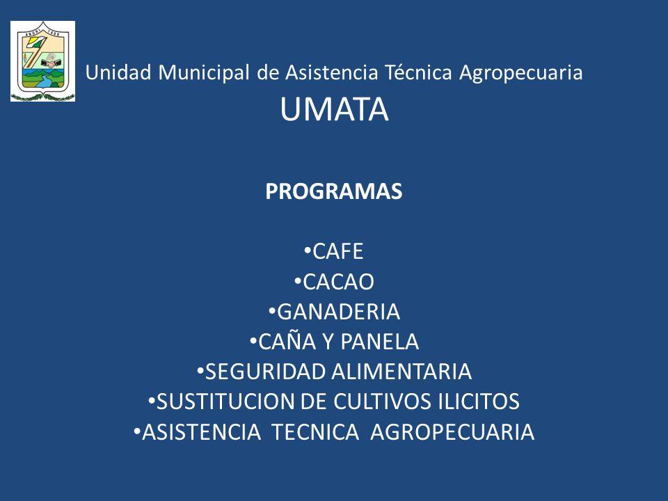 Unidad Municipal de Asistencia Técnica Agropecuaria UMATA PROGRAMAS CAFE CACAO GANADERIA CAÑA Y PANELA SEGURIDAD ALIMENTARIA SUSTITUCION DE CULTIVOS ILICITOS ASISTENCIA TECNICA AGROPECUARIA