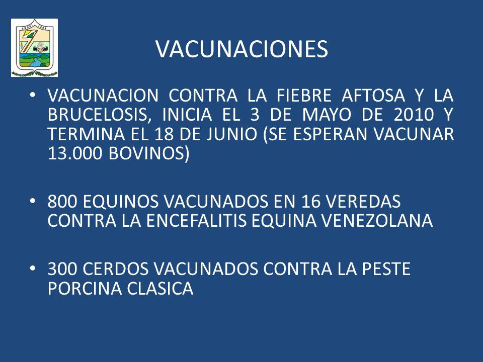 VACUNACIONES VACUNACION CONTRA LA FIEBRE AFTOSA Y LA BRUCELOSIS, INICIA EL 3 DE MAYO DE 2010 Y TERMINA EL 18 DE JUNIO (SE ESPERAN VACUNAR 13.000 BOVINOS) 800 EQUINOS VACUNADOS EN 16 VEREDAS CONTRA LA ENCEFALITIS EQUINA VENEZOLANA 300 CERDOS VACUNADOS CONTRA LA PESTE PORCINA CLASICA