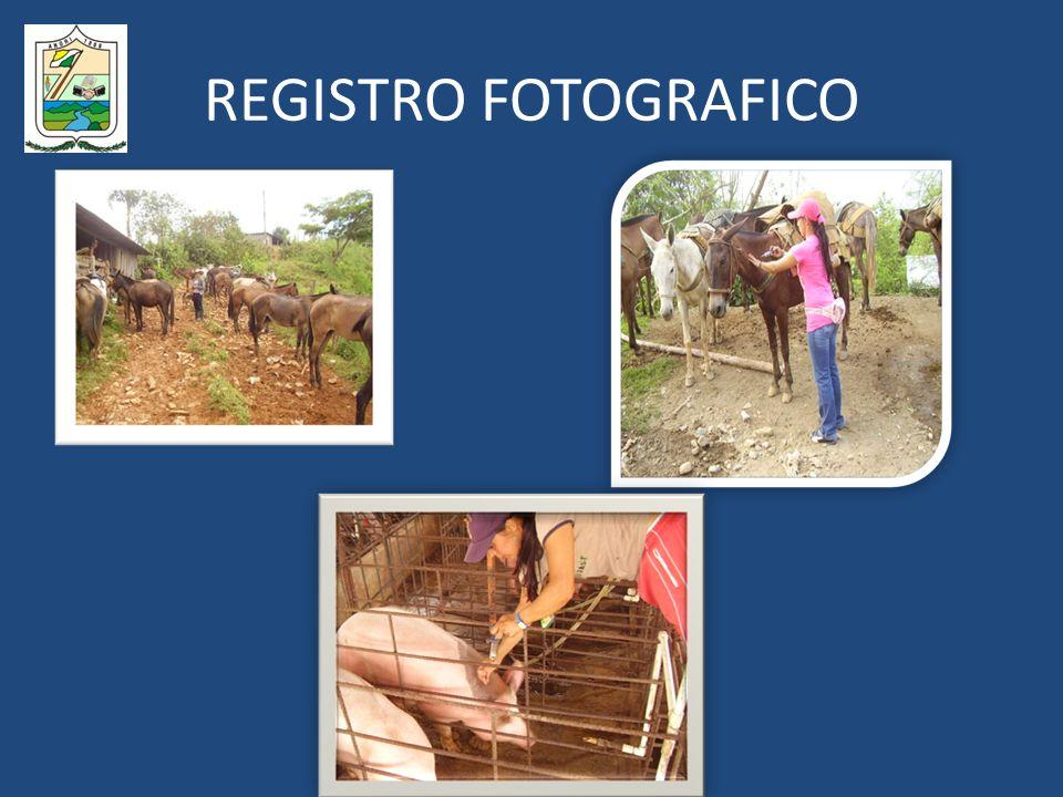 REGISTRO FOTOGRAFICO
