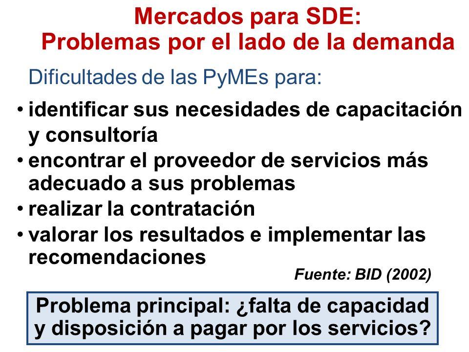 Mercados para SDE: Problemas por el lado de la demanda Dificultades de las PyMEs para: Fuente: BID (2002) Problema principal: ¿falta de capacidad y disposición a pagar por los servicios.