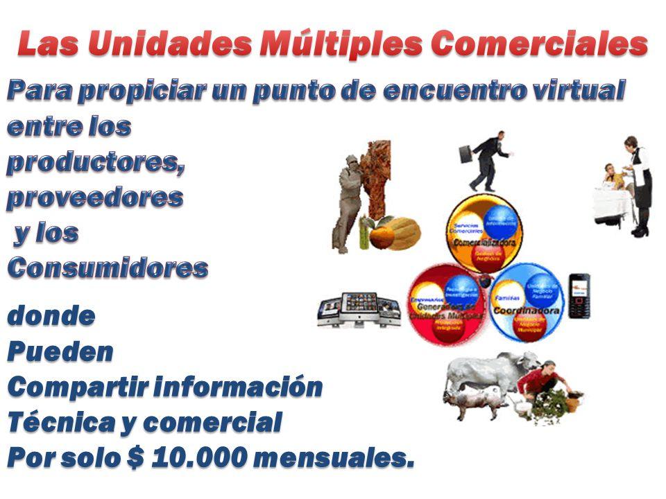 dondePueden Compartir información Técnica y comercial Por solo $ 10.000 mensuales.